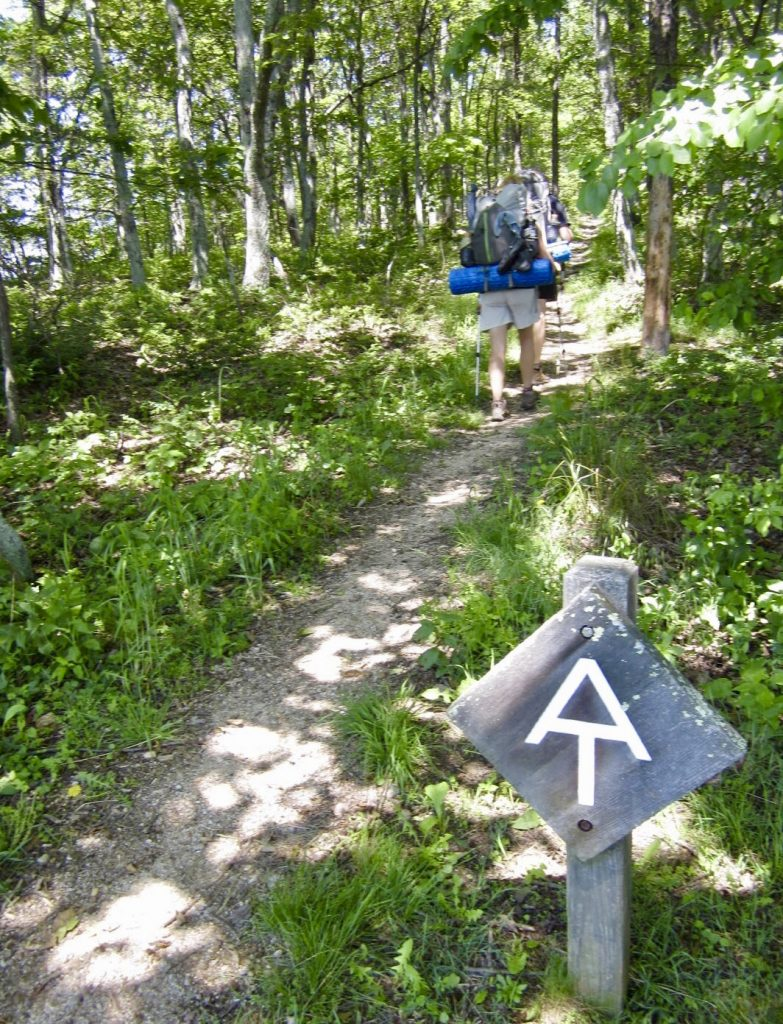 Racing along the trail with the Honeymoon Hikers. It's Not Farewell